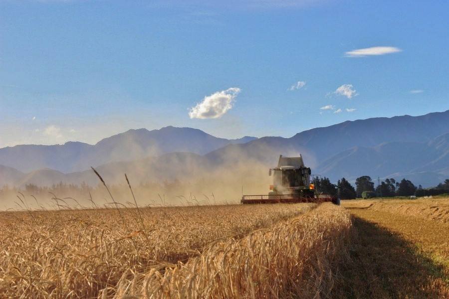 Methven Harvesting (2) - Mid Canterbury Owner / Operator Agricultural Contractor